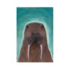 Cute Walrus Painting